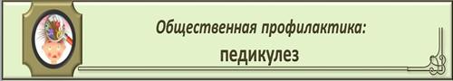 %d0%bc%d0%b5%d0%b4-2_500x90