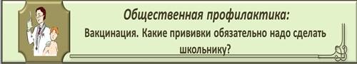 %d0%bc%d0%b5%d0%b4-3_500x90